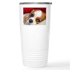Blenheim Cavalier King  Travel Mug