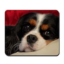 corbin_pillow Mousepad