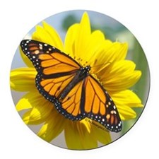Monarch Butterfly Round Car Magnet