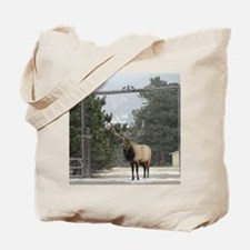 Elk in Estes Park Colorado Tote Bag
