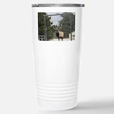 Elk in Estes Park Color Travel Mug