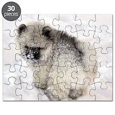Newt in snow Puzzle