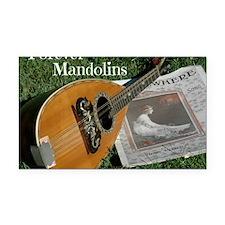 2Cal_Forever_Mandolins_Cover_ Rectangle Car Magnet