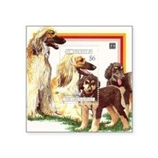 """Afghan Hounds from St Vince Square Sticker 3"""" x 3"""""""