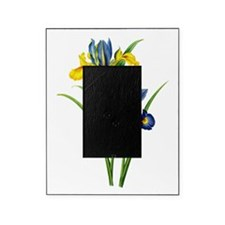 Redoute Iris045 Picture Frame