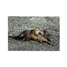 River Otters Rectangle Magnet