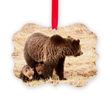 Grizzly Bear with cubs Picture Ornament