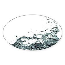 Hallé Splash Decal