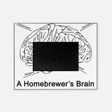 A Homebrewer's Brain (white) Picture Frame