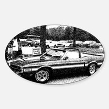 69 Shelby GT Decal