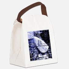 Spying On The Universe Canvas Lunch Bag