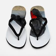 Valentines Labrador Puppy Flip Flops