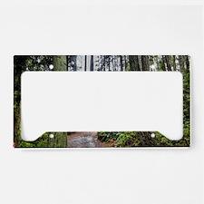 IMG_5133-HDR(2) License Plate Holder