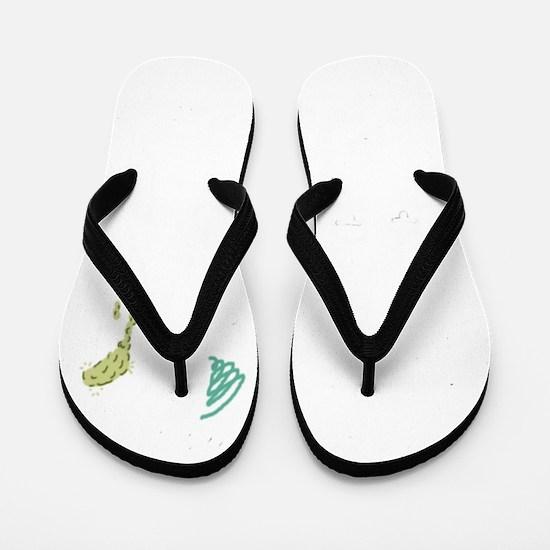 Welcome to Florida Flip Flops