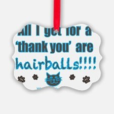 all I get for a thank you are hai Ornament