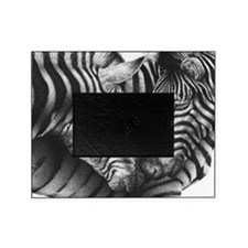 Zebras Pillow Case Picture Frame