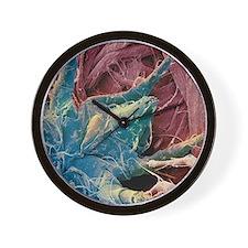 Dust mite, SEM Wall Clock