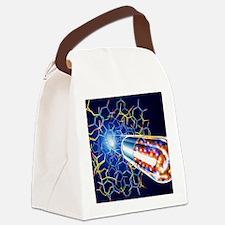 Drug development Canvas Lunch Bag