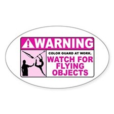 Flying Objects, Pink Oval Decal