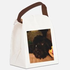 Would this face lie? Canvas Lunch Bag