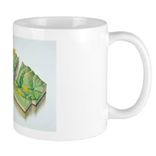 Fault types Mug
