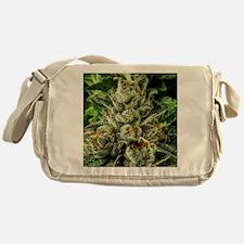 Master_IMG_1555 Messenger Bag