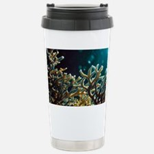 Fire coral Stainless Steel Travel Mug