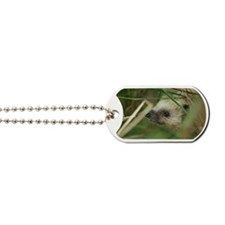 European hedgehog Dog Tags
