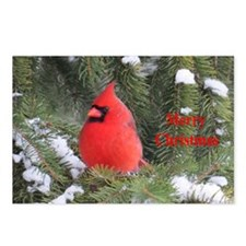 Cardinal Postcards (Package of 8)