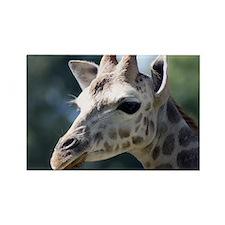 Giraffe Shoulder Bag Rectangle Magnet