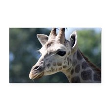 Giraffe Shoulder Bag Rectangle Car Magnet