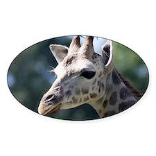 Giraffe Shoulder Bag Decal