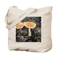 Orange Grisette Tote Bag