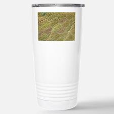 Fish skin, SEM Travel Mug