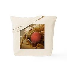 Fruit fly head, SEM Tote Bag