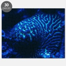 Fluorescing coral Puzzle