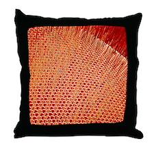 z3400516 Throw Pillow