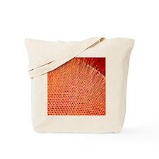 Fly's eye, SEM Tote Bag
