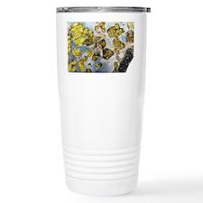 Fukeng meteorite Travel Mug