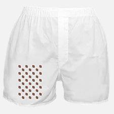 kindle-Sleeve Boxer Shorts