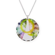 Rainbow Angel Wings Necklace