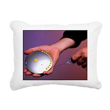 t3000291 Rectangular Canvas Pillow