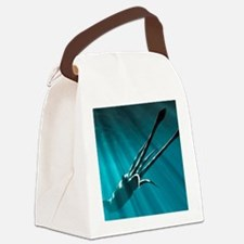 z5050132 Canvas Lunch Bag