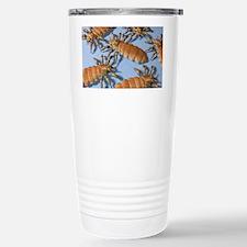 Head lice, artwork Travel Mug