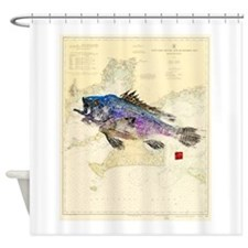 Black Sea Bass On Buzzards Bay Shower Curtain