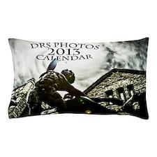 cover 2013 calendar Pillow Case