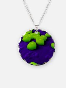 Acinetobacter bacteria, artw Necklace Circle Charm