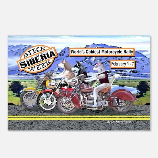 Siberian Husky Siberia Bi Postcards (Package of 8)