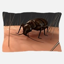 Bedbug, artwork Pillow Case