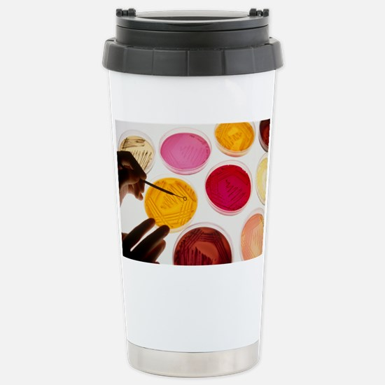 Petri dish bacterial cu Stainless Steel Travel Mug
